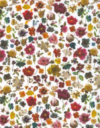 Floral Edit C tana lawn - Ava & Neve